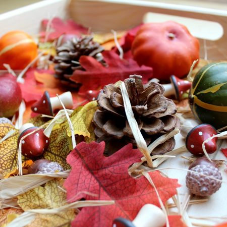 How to Set Up a Simple Autumn Sensory Box